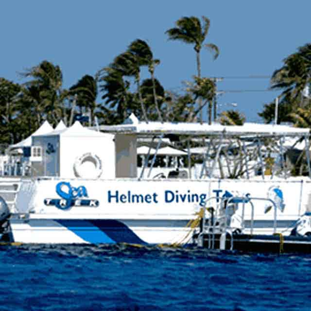 Dive Location in Cayman